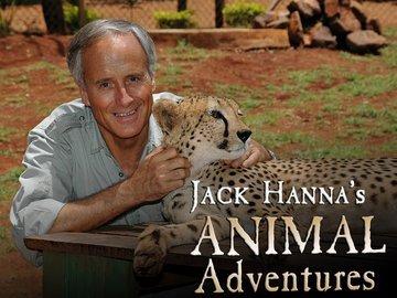 Jack_Hannah