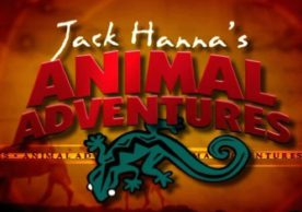 Jack Hanna's Animal Adventures E/I Ages 13-16