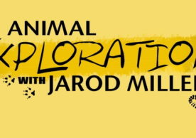 Animal Exploration with Jarod Miller E/I Ages 13-16
